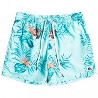 Quiksilver Paradise Express Volley 15 - Swim brief Cabbage - Men's Outdoor clothing Clearance Sale UULPXWB